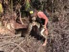 Lovec pytónov má v Miami plné ruky práce