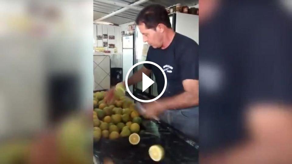Fruit Ninja - Mojevideo