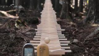 Hudba z lesa