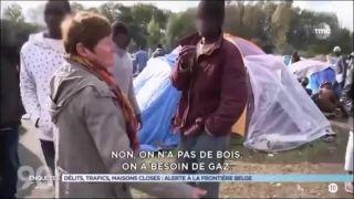 Dobrovoľníci, ilegáli a hyenizmus (Francúzsko)
