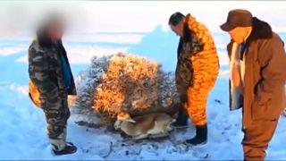 Na kosť (Mongolsko)