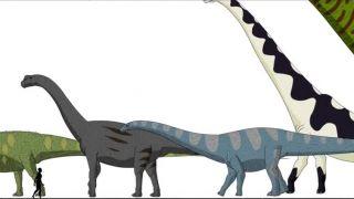 Aké veľké boli dinosaury v porovnaní s človekom?