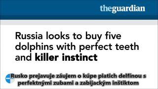 Absurdita médií: Ruské KGB delfíny