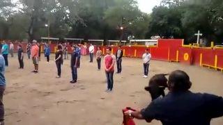 Býčie zápasy trochu inak (Mexiko)