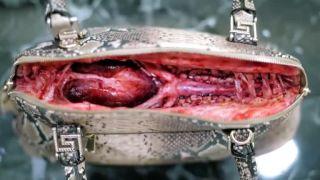 Čo skrývajú luxusné kožené výrobky?