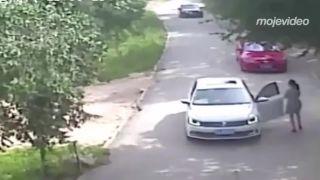V ZOO parku z auta nevystupujte! (Čína)
