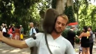 Nikdy nenechajte po sebe loziť opice!