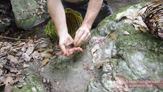 Výroba pasce na kôrovce (primitívne techniky prežitia)
