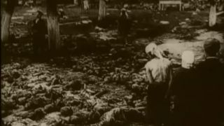 The Soviet story - Hladomor na Ukrajine 1933