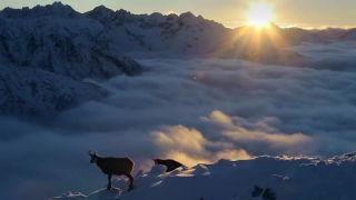 Život v oblakoch (SK dokument o Tatrách - trailer)