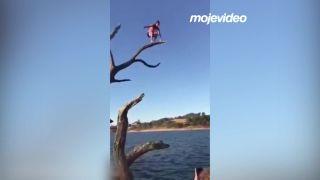 Skoč z tej najvyššej vetvy! (Austrália)