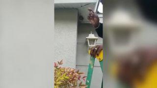 Starší pán zničí osie hniezdo holými rukami