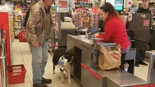 Borderka Hali na nákupe v supermarkete!