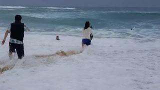 Chcel si ho zobrať oceán! (Havaj)