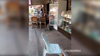 Ako sa nakupuje mlieko v Thajsku