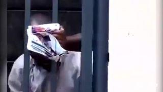Čiernych loptošov nachytal na hruškách (Južná Afrika)