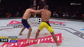 Trikrát a dosť! (MMA)