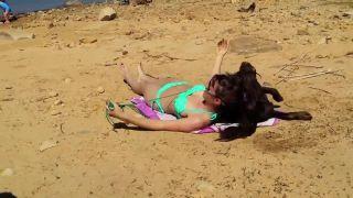 Na pláži s labradorom
