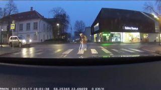 Pán šofér, na niečo si zabudol (Estónsko)