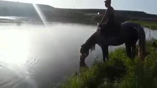 Utopil svojho koňa (Idiot dňa)