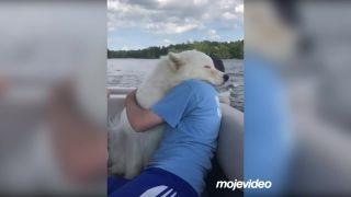 Najlepší priateľ človeka je pes!