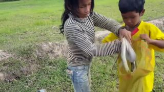 Kmérske deti lovia hady!