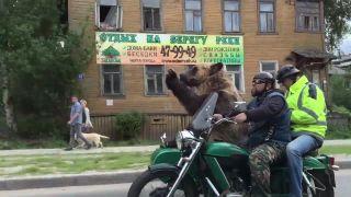 Keď uvidíš v sajdke medveďa, vieš že si v Rusku!