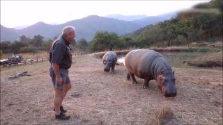 Vo výbehu s najnebezpečnejším zvieraťom Afriky