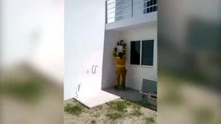 Brazílski hasiči museli zachraňovať šialenú mačku